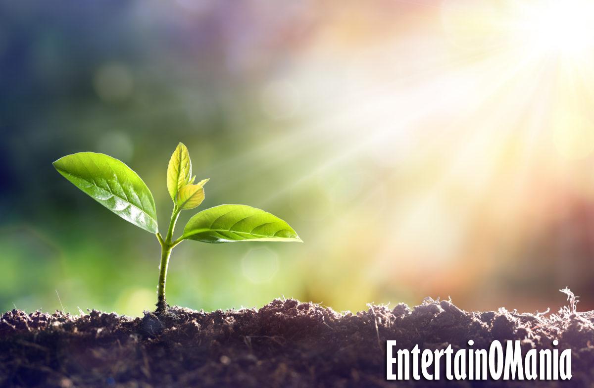 plant entertainomania
